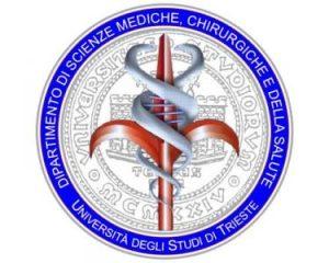 Logo DSM 400x400